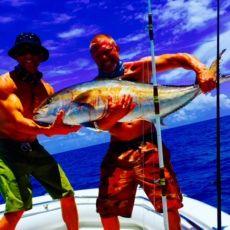 Charter Boston Whaler 270 Outrage in Miami Beach - Click&Boat