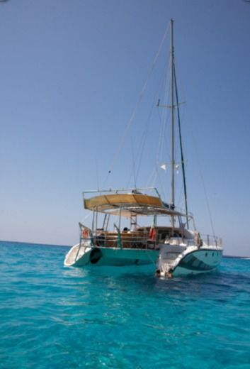 Catamarano Kennex 445