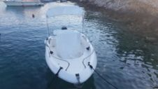 Motorboat Primus Fisher 17