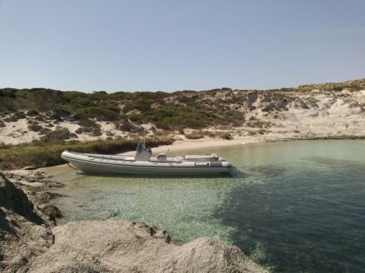 Scorpion 8,60 a Antiparos da noleggiare
