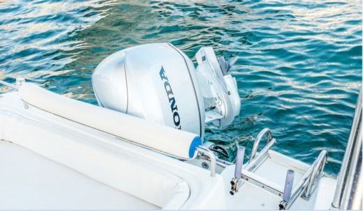 Blumax 560 in Vodice for hire