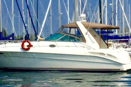 Rental Motorboat Sea Ray Sundancer 340 Toronto