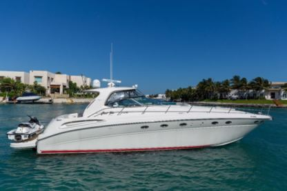 Rental Motorboat Sea Ray 51Ft Cancún