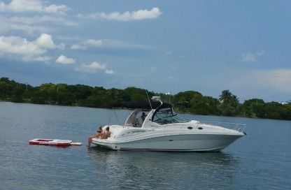 Charter Motorboat Sea Ray 37 North Miami