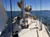 Sailboat Sigma 38 Ood for hire