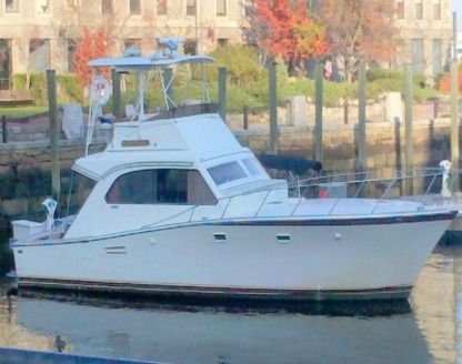 Rental Motorboat Post Marine Fisher Boston