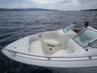 Motorboat Sea Ray Sea Ray 210 Dc