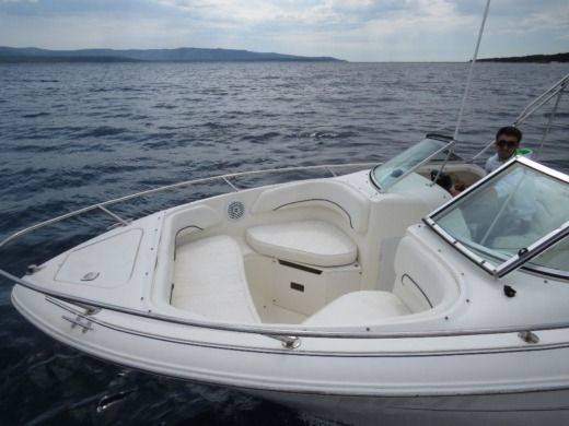 Motorboat SEA RAY Sea Ray 210 DC for hire
