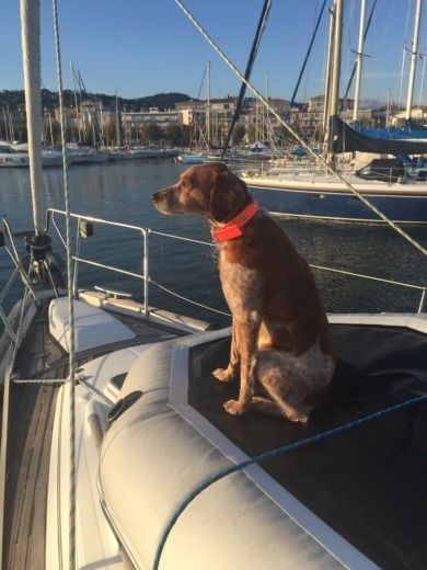Sailboat Beneteau Oceanis 411 for hire