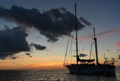 Charter Sailboat Fuji 32' Key West