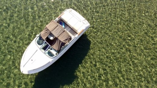 Motorboat Sea Ray 180 for rental