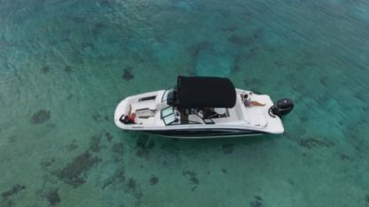 Charter Motorboat Sea Ray 28 Cozumel