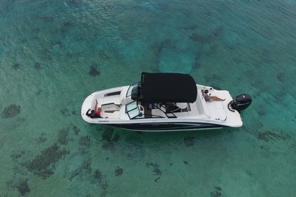 Hire Motorboat SEA RAY 28 Cozumel