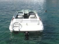 Motorboat Sea Ray 180 for hire