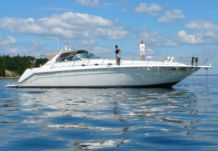 Motorboat Searay 500 for rental