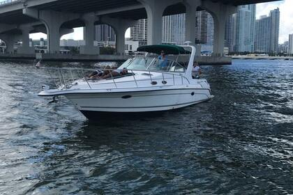 Rental Motorboat Aboard 38 Miami