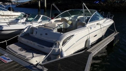 Motorboat Sea Ray 235 for hire