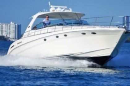 Rental Motorboat Searay 54 North Bay Village