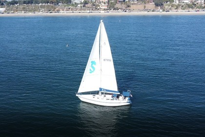 Rental Sailboat Islander Doug Peterson 40 Long Beach