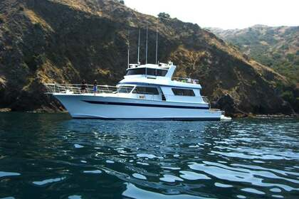 Rental Motorboat Pacifica Motor 85 Newport Beach