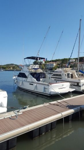 CHRIS CRAFT VEDETTE 31 COMMANDER in La Seyne-sur-Mer zu vermieten