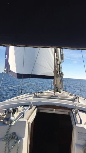 Rental Sailboat Bavaria Yatch 39 Cruiser Alicante