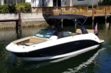 Motorboat Sea Ray Sdx 250