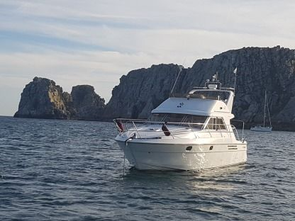 Charter Motorboat Princess 380 Brest