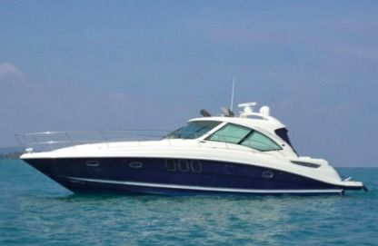 Charter Motorboat Sea Ray 480 Sundancer Miami