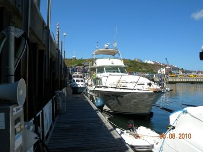 Rental Motorboat Bertram 46.6 Arnhem