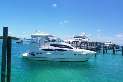 Rental Motorboat Sea Ray Yatch 405 Hialeah