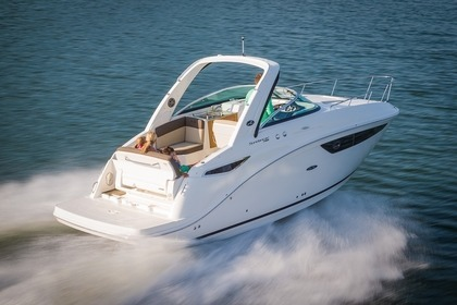 Charter Motorboat Sea Ray 260 Austin