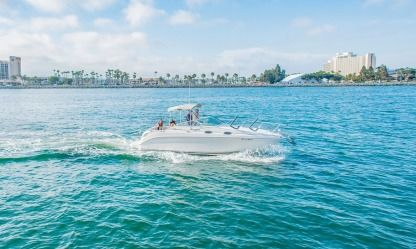 Charter Motorboat Sea Ray 260 Sundancer San Diego