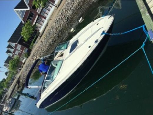 Motorboat Sea Ray Sunsport 240