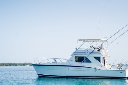 Hire Motorboat CHRIS CRAFT 48 Nassau