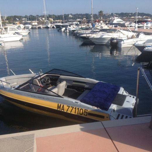 Motorboat Vaillant Vip for hire