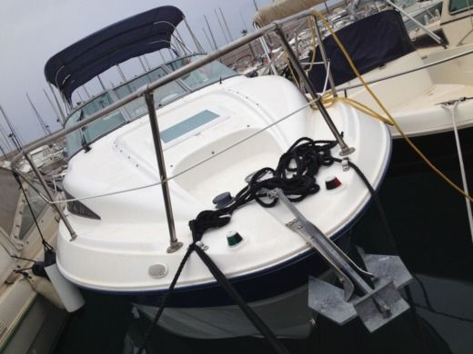 Motorboat Bayliner 245 Sb for hire