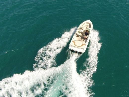 Motorboat Sea Ray 230 BR for hire