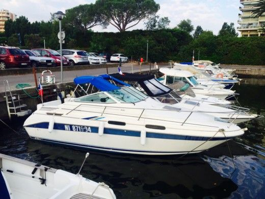 Motorboot Sea Ray Sundancer zu vermieten