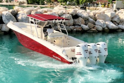 Charter Motorboat Wellcraft Scarab 35 Miami