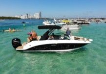 Motorboat Sea Ray Sdx 250 for hire
