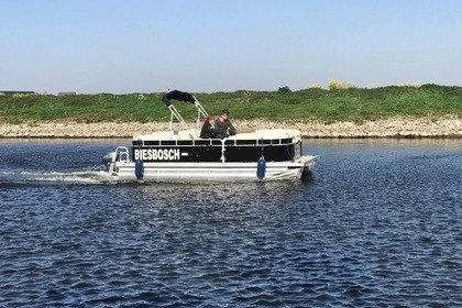 Miete Motorboot Pontoon 6mt Waspik