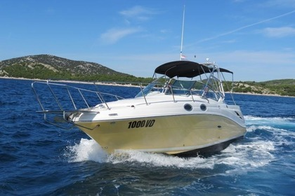 Hire Motorboat SEA RAY 275 Amberjack Tribunj