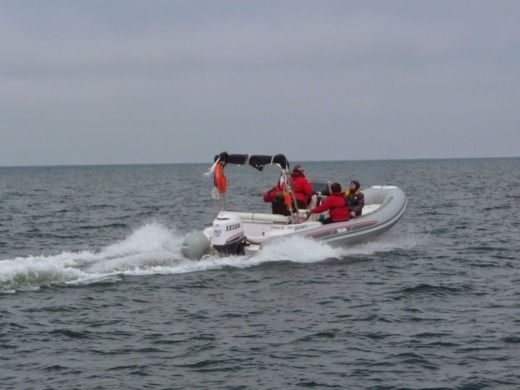 RIB SELVA MARINE 650 DS for hire