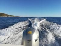 Rental rIB in Split