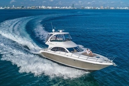 Hire Motorboat SEA RAY 52 SEDAN Miami