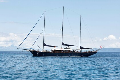 Hire Sailing yacht Special Traditional Gulet Barba Split