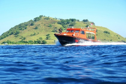 Rental Motorboat Red Whale Speedboat Komodo