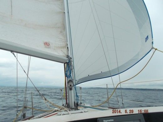Segelboot Beneteau First 30