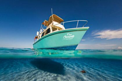 Hire Motorboat Custom 1966 Playa del Carmen